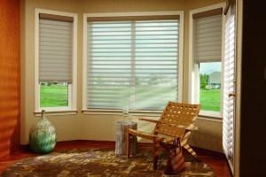 silhouette-window-shadings