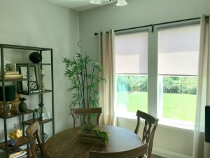Roller Shades with Cassettes 005