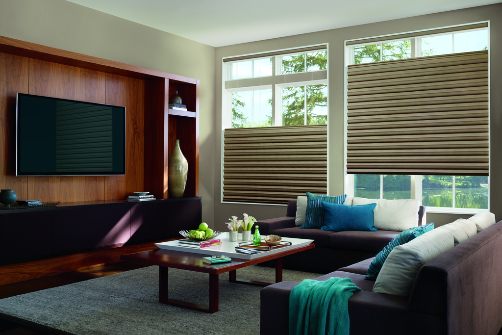 Window Shades Jacksonville Fl All About Blinds Amp Shutters
